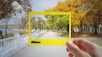 Udemy Beginner Nikon Course