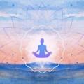 Udemy Yoga For Beginners
