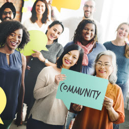 alison introduction to community development