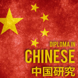 Alison Chinese Language Studies