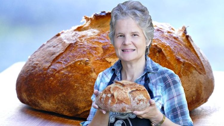 Udemy Sourdough Bread Baking